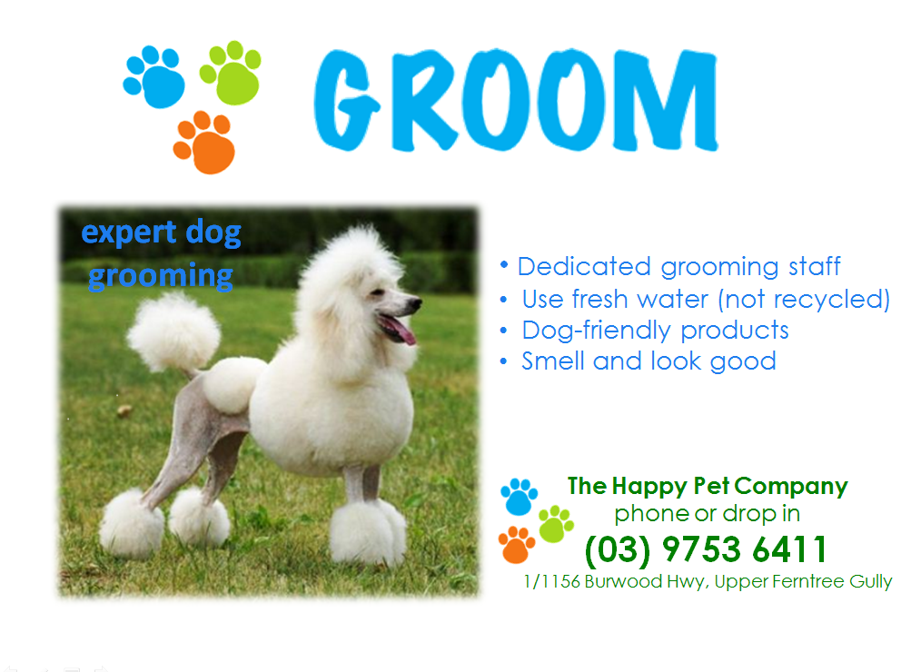 dog grooming - the happy pet company