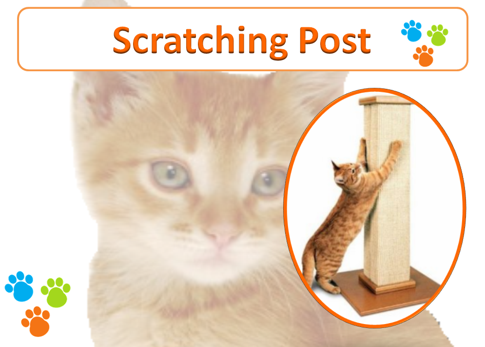 Scratching Post for Cats - The Happy Pet Company